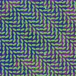 Animal_Collective_Merriweather_Post_Pavilion